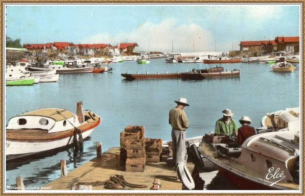 Gujan-Mestras autrefois : Ostréiculteurs au travail dans la darse principale du Port de Larros, Bassin d'Arcachon (carte postale - version couleur 1, collection privée)