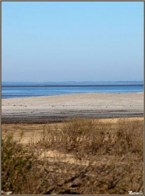La plage et le Bassin, en hiver, en bordure du Sentier du Littoral, secteur Moulin de Cantarrane, Bassin d'Arcachon