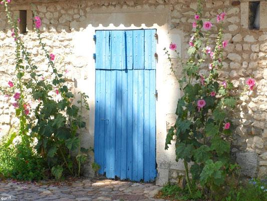 Porte aux volets bleus clos et valérianes à Talmont-sur-Gironde (Charente-Maritime)