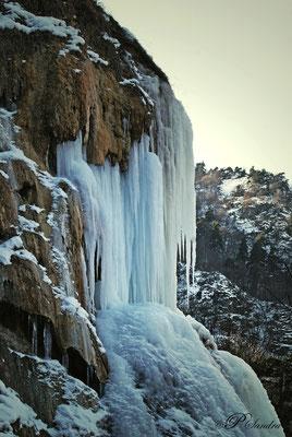 Auvergne ... La Source de la Tête de Lion , gelée ! .. 10.02.12
