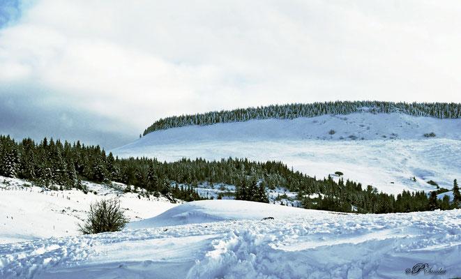 Auvergne ... Le cezallier ...  03.12.10