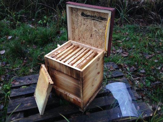Kuntzsch Hoch Rähmchenformat ist perfekt für Bienen Nistkästen, Baumhäuser