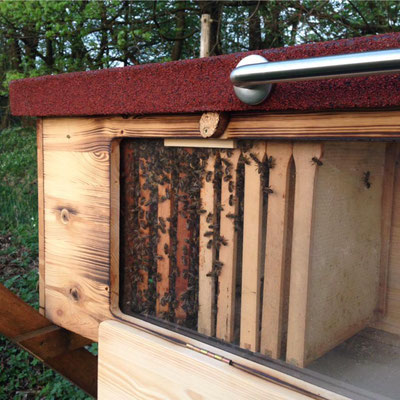 Kuntzsch Hoch Rähmchen im BienenHaus Classic