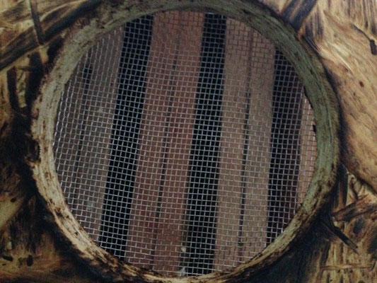 Bienenbaumhaus mit Bodenlüftung