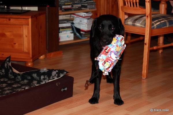 Luna mit ihrem Geschenk...