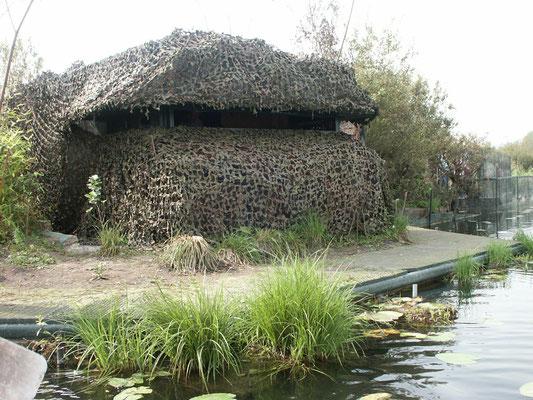 Camouflage de la hutte.