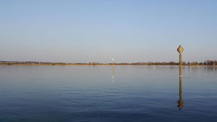 Das Wollmatinger Ried, eine weitläufige Schilflandschaft. Wie ein sandgelbes Band umsäumt das Schilf die Ermatinger Bucht. Rechts mündet der Seerhein in den Untersee. Die Pfähle markieren die Fahrrinne für die Boote.