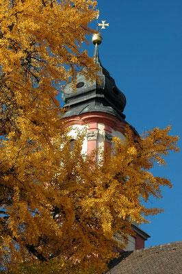 Herbst auf der Mainau.