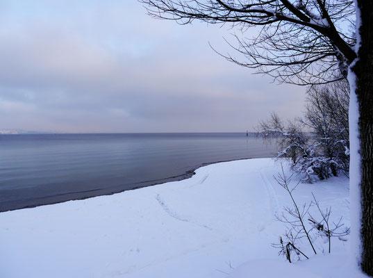 Der Obersee im Schnee.