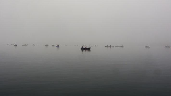 Fischerschwarm über Felchenschwärmen.