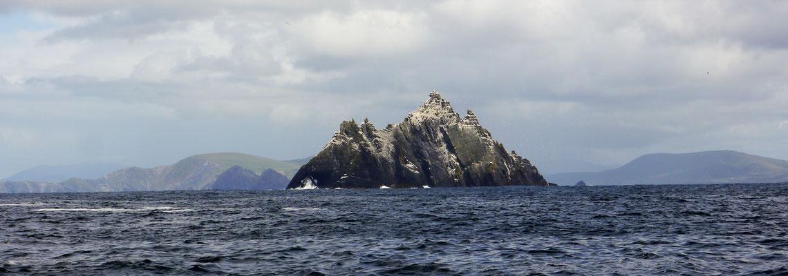 Wie ein morscher Zahn ragt Little Skellig Island aus dem Meer.