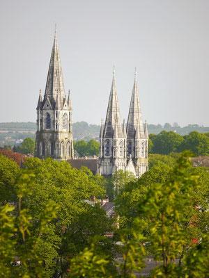 Die Kathedrale von Cork City.