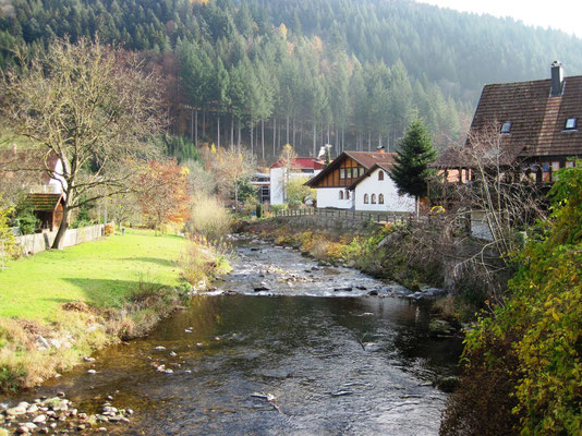 """""""Oberwolfach lag in einer kleinen Ebene, mit weiten hellen Wiesen und Obstbäumen. Entlang der Straße floss die Wolfach schnell zwischen großen Steinen."""""""