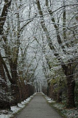 ...und im Winter.