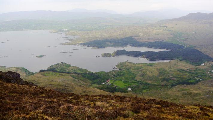 Der Ostteil des Lough Currane mit der bewaldeten Edere Peninsula. Wie ein Finger ragt sie in den See hinein. Hier steht Janes Hostel.