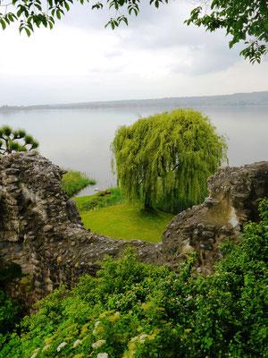 Genauso eine Weide sieht man von Schloss Untersee aus.