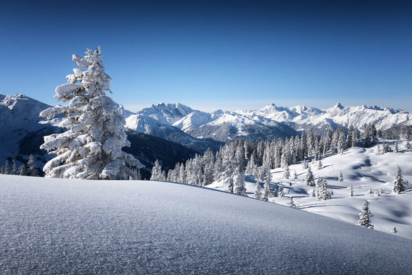 Schneeschuhwanderung auf das Muttjöchle (c) Andreas Haller - Montafon Tourismus GmbH