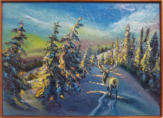 """""""A Sunset beyond the Fir Trees"""", oil, canvas, 50x70cm, 2015"""