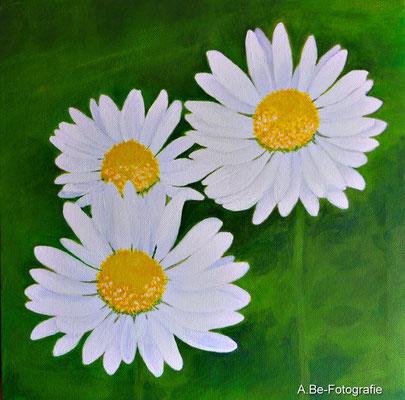 Gänseblümchen -nach meinem Foto-