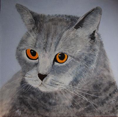 Katze meiner Tochter -nach meinem Foto-