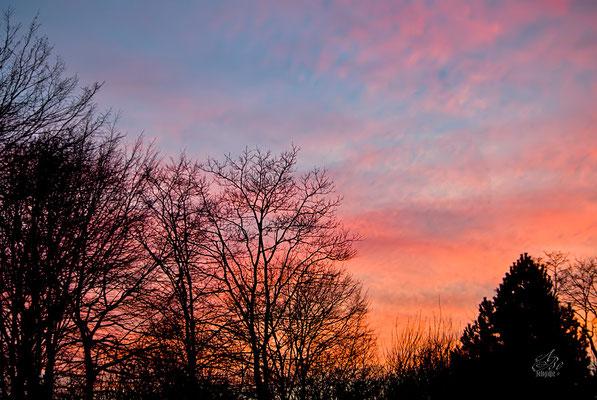Der Himmel brennt  -Januar15-
