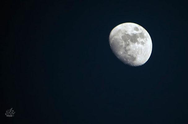 zunehmender Mond  -März15-