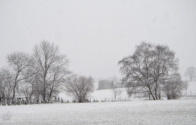 Der  Winter ist noch nicht vorbei  -März15-