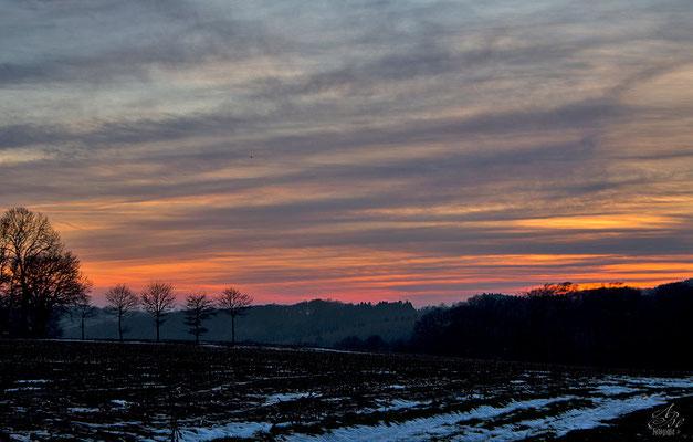 Sonnenuntergang  -Januar15-