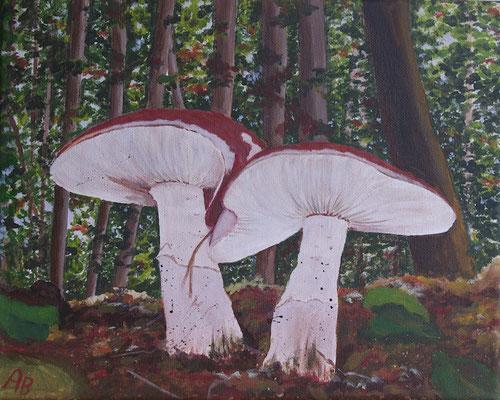 Pilze -nach einem Foto von Angelika H.....Herzlichen Dank-