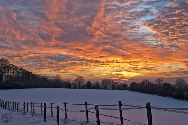 Sonnenuntergang  -Jan17-