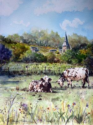 Pays d'Auge Petit village de campagne