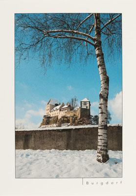 Schloss Burgdorf im Schnee