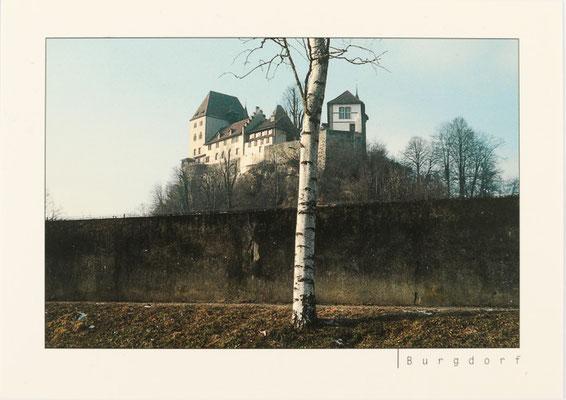 Schloss Burgdorf (vergriffen)