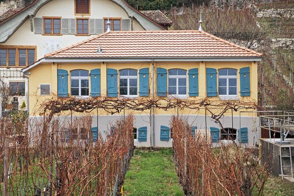 Altes Pfropfhaus, Twann