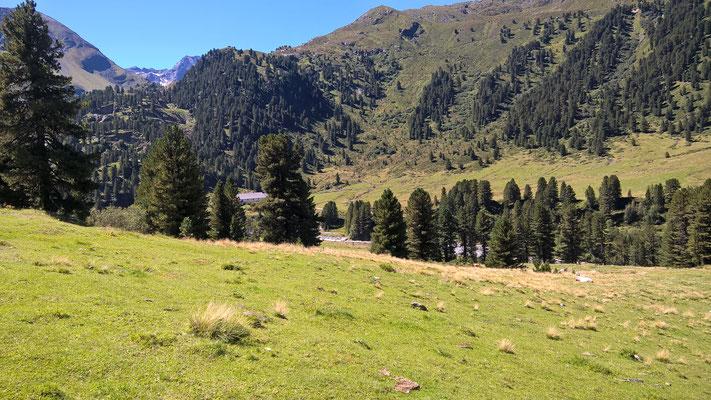 Vorbei an den Wiesen der Nassereinalm (2.041 mtr)