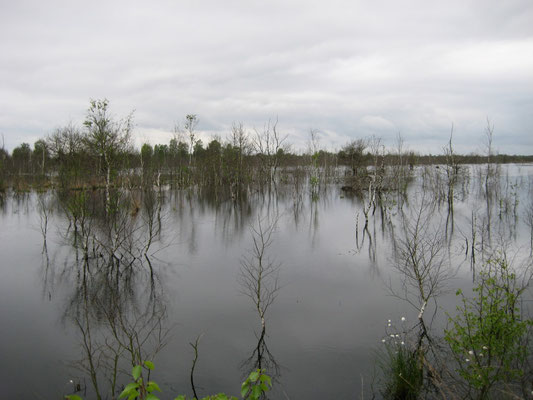auch Wasserflächen entstehen
