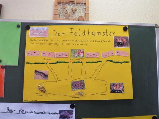 'Wo wohnen Tiere?' - Der NABU Leipzig hat Schüler der Heinrich-Mann-Grundschule in der Themenwoche unterstützt.
