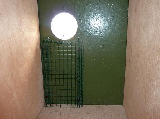 Dohlen-Nistkasten mit Ausstieghilfe für Mauersegler