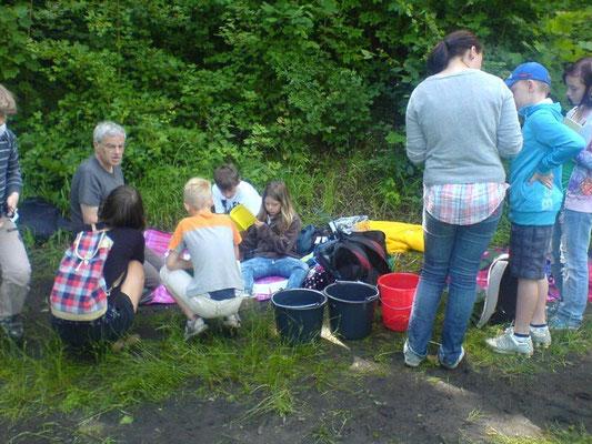Von Dr. Leonhard Kasek erfuhren die Schüler viel Wissenswertes über den Kulkwitzer See.