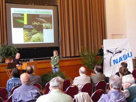 Roland Zitschke vom NABU Leipzig stellte gemeinsam mit Angelika Freifrau von Fritsch (Amt für Umweltschutz des Stadt Leipzig) die drei Kandidaten zur Wahl des Auwaldtiers 2011 vor.