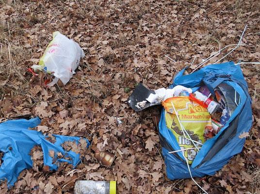 Im Müllsack war der Abfall, warum er nicht in der Mülltonne, sondern in der Natur landete, weiß nur der Verursacher.