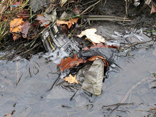 Müll in der Natur kann zur tödlichen Tierfalle werden.