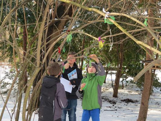 Die Schülergruppe hat zusammen mit dem NABU die leeren Netze eingesammelt.