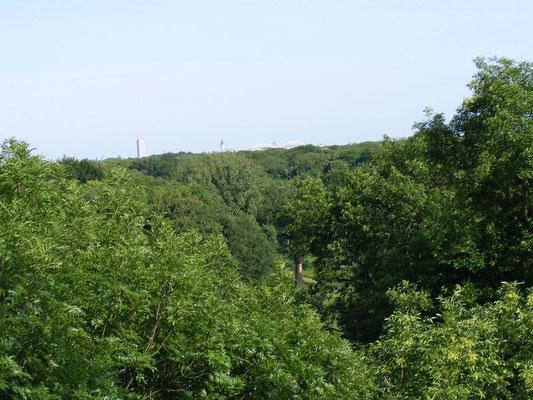 Blick in Richtung Stadtzentrum aus 35 Metern Höhe.