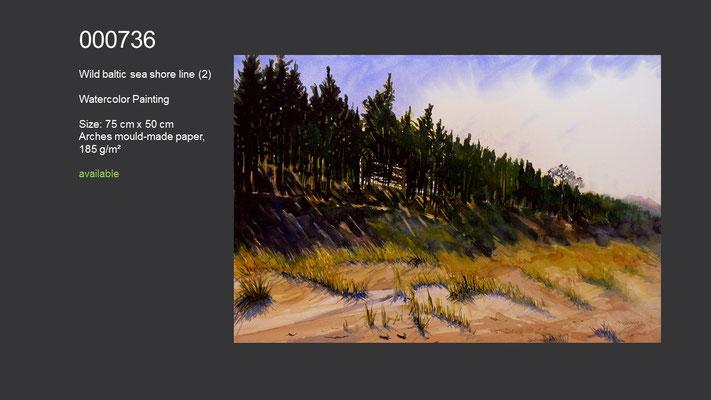 736 / Wild baltic sea shore line (2), Watercolor painting, 75 cm x 50 cm; available