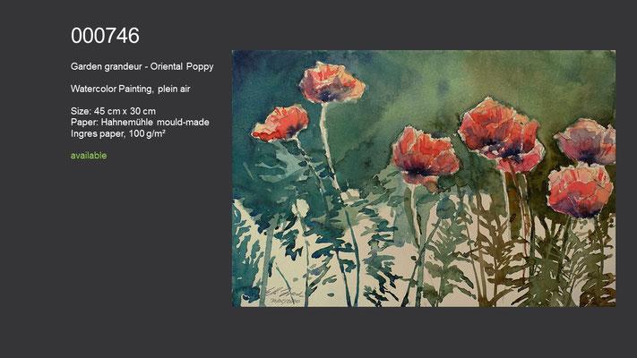 746 / Garden grandeur - Oriental Poppy, Watercolor painting, plein air, 45 cm x 30 cm; available