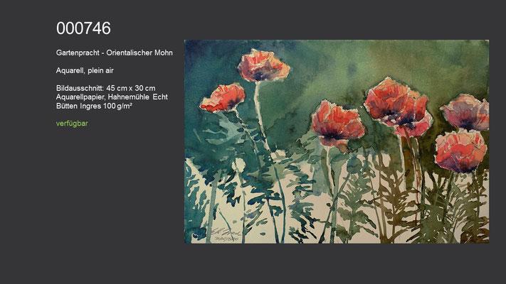 746 / Aquarell, plein air / Gartenpracht - Orientalischer Mohn, 45 cm x 30 cm; verfügbar