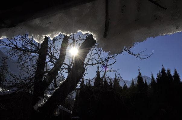 Sonne, Schnee, blauer Himmel .... was will man mehr!?