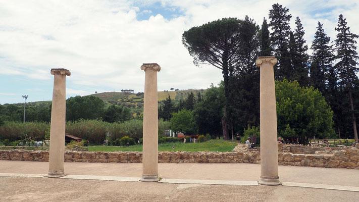 Colonnes antiques en extérieur