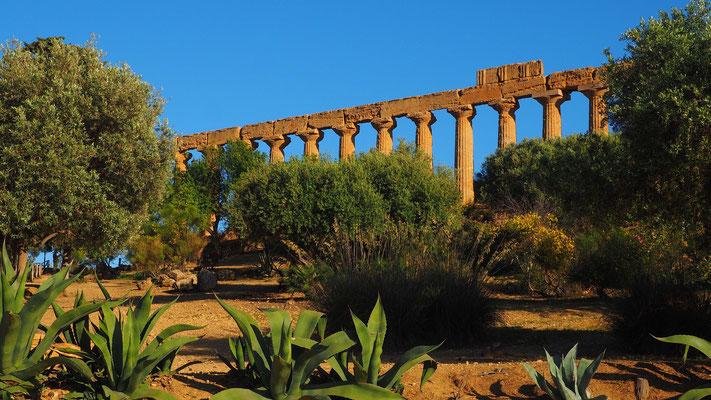 Magnifique vue sur l'antiquité